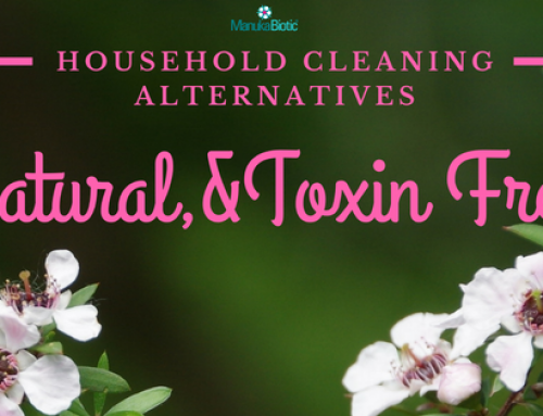 Natural, Toxin free, Household Cleaning Alternatives